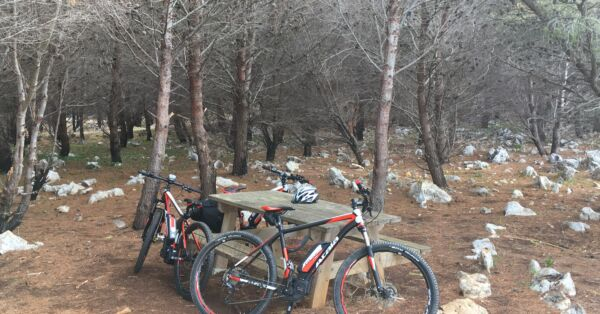MONTEPELLEGRINO AND FAVORITA PARK MTB EXPERIENCE